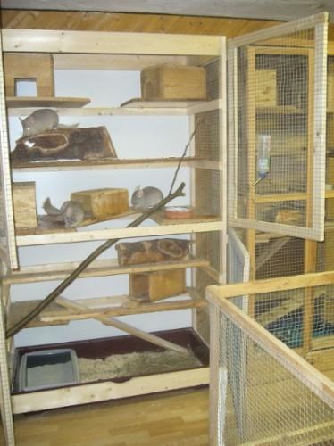 Chinchilla-Käfig